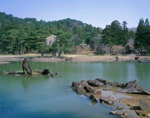 毛越寺 春の庭園の写真素材 [FYI03341983]
