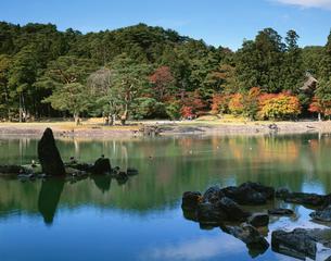 秋の毛越寺庭園の写真素材 [FYI03342029]