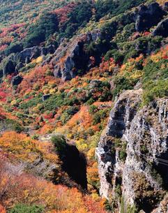 秋の寒霞渓とロープウェイの写真素材 [FYI03342032]