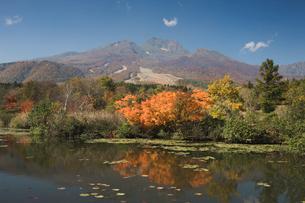 妙高高原 いもり池の写真素材 [FYI03342132]