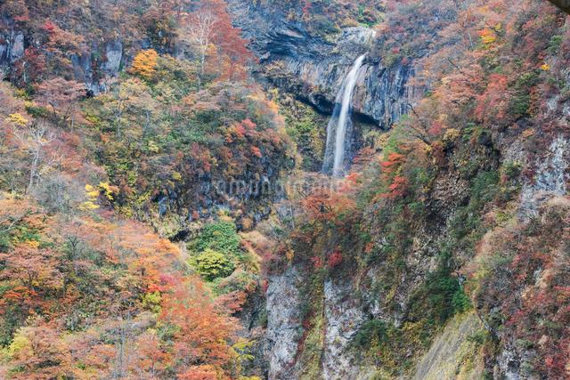 惣滝の写真素材 [FYI03342148]