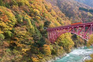 黒部峡谷鉄道 トロッコ列車の写真素材 [FYI03342152]