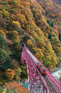 黒部峡谷鉄道 トロッコ列車の写真素材 [FYI03342156]