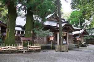 高千穂神社の写真素材 [FYI03342262]