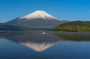 山中湖畔より富士山を望むの写真素材 [FYI03343206]