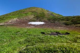 チングルマ咲く登山道より駒ケ岳を望むの写真素材 [FYI03343268]