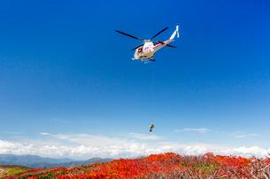 栗駒山山頂でのヘリコプターによる登山者救助活動を望むの写真素材 [FYI03343642]