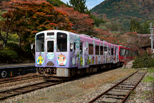 会津鉄道湯野上温泉駅付近を走る列車の写真素材 [FYI03343857]