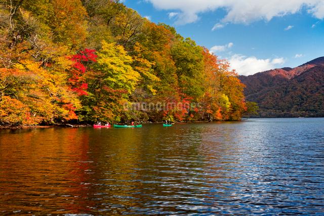宇樽部キャンプ場付近よりカヌーと紅葉の十和田湖を望むの写真素材 [FYI03343883]