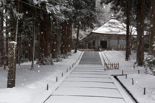 冬の中尊寺 金色堂の写真素材 [FYI03343912]