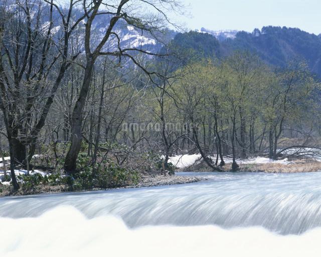 早春の里山の写真素材 [FYI03344234]
