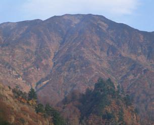 朝日に染まる秋の浅草岳の写真素材 [FYI03344287]