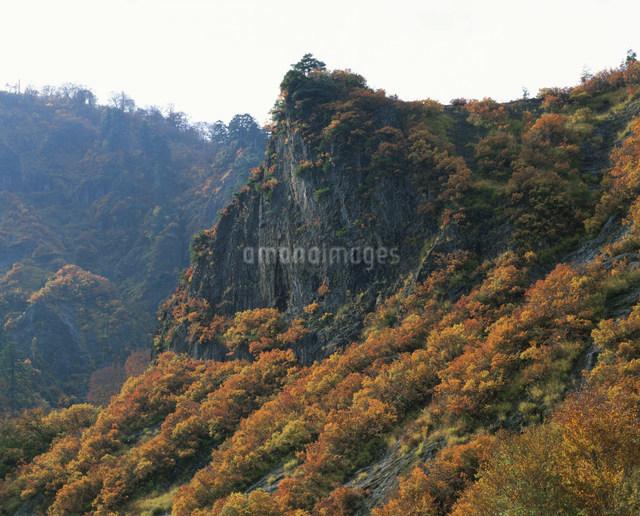 秋の六十里越峠にての写真素材 [FYI03344294]