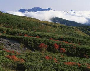 乗鞍山上の秋の写真素材 [FYI03344468]