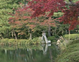 秋の兼六園にての写真素材 [FYI03344535]