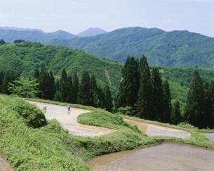 山村の棚田と田植えの写真素材 [FYI03344592]