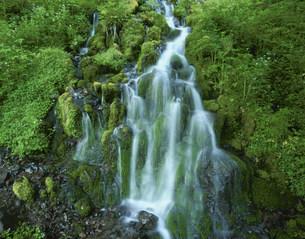 湯ノ丸高原五郎の滝の写真素材 [FYI03344910]
