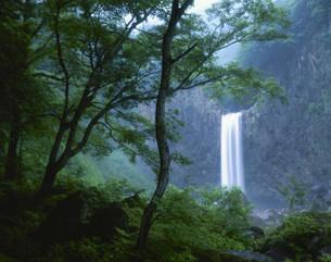 苗名滝の写真素材 [FYI03344924]