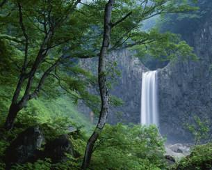 苗名滝の写真素材 [FYI03344954]