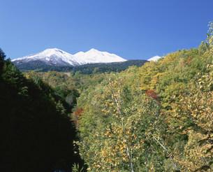 冠雪の乗鞍岳と紅葉の写真素材 [FYI03345216]