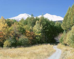 冠雪の乗鞍岳と秋の道の写真素材 [FYI03345217]