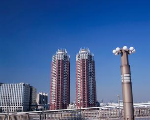 夢の大橋から見たビルの写真素材 [FYI03345277]