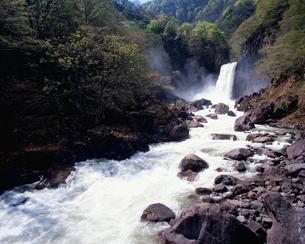 春の苗名滝の写真素材 [FYI03345370]