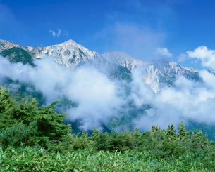 八方尾根から望む白馬三山の写真素材 [FYI03345435]