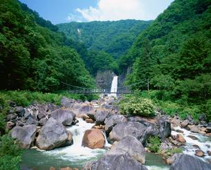 夏の苗名滝の写真素材 [FYI03345440]