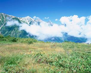 八方尾根から望む白馬三山の写真素材 [FYI03345442]