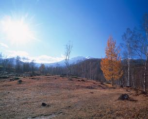 秋の乗鞍高原の写真素材 [FYI03345469]