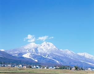 冠雪の妙高山の写真素材 [FYI03345504]