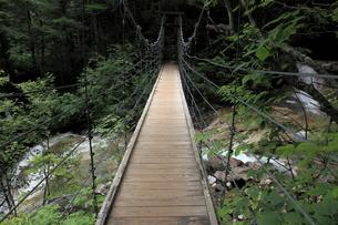 乗鞍高原の吊り橋の写真素材 [FYI03345711]