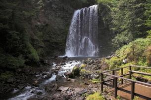 乗鞍高原の善五郎の滝の写真素材 [FYI03345719]