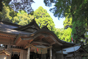 高千穂神社の写真素材 [FYI03345795]