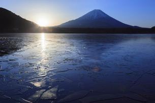 精進湖から望む富士山の写真素材 [FYI03345801]