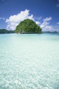 海と緑の小島ロックアイランズの写真素材 [FYI03345915]