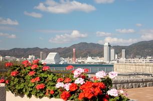 ハーバーランド神戸港の写真素材 [FYI03346784]