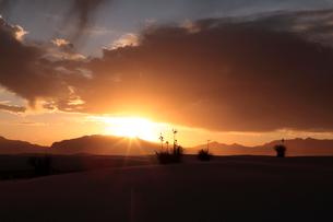 夕方のホワイトサンズ ホワイトサンズNPの写真素材 [FYI03347486]
