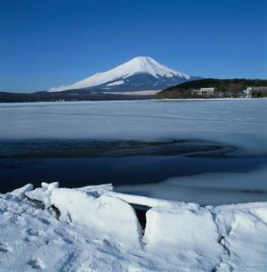 山中湖の氷結と富士山の写真素材 [FYI03347615]