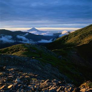 烏帽子岳から望む朝の富士山の写真素材 [FYI03347638]