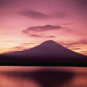 田貫湖の朝焼けと富士山の写真素材 [FYI03347690]