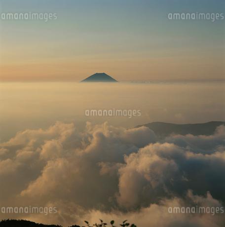 千枚岳から望む雲海の朝焼けと富士山の写真素材 [FYI03347716]