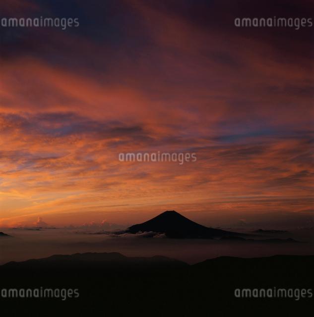千枚岳から望む朝焼けと富士山の写真素材 [FYI03347723]