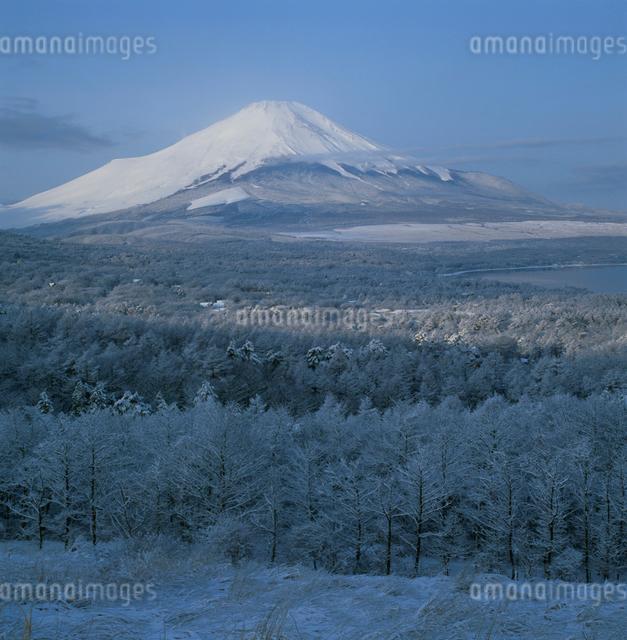 パノラマ台から望む雪景色と富士山の写真素材 [FYI03347745]