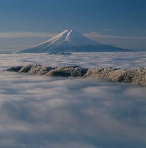 白谷丸から望む雲海と富士山の写真素材 [FYI03347750]