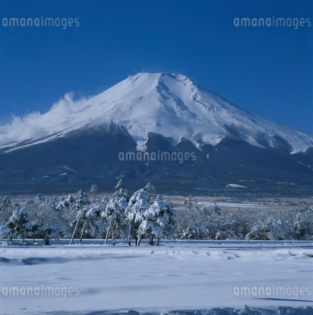 花の都公園の雪景色と富士山の写真素材 [FYI03347757]