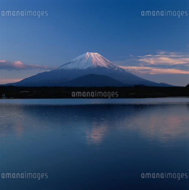 精進湖から望む夕焼けの富士山の写真素材 [FYI03347766]