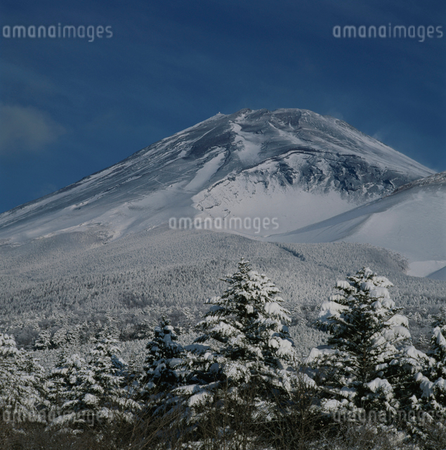 水ヶ塚公園の雪景色と富士山の写真素材 [FYI03347768]