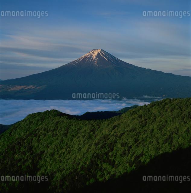 三ッ峠の新緑と富士山の写真素材 [FYI03347775]